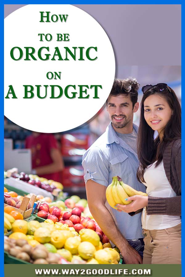 Can you do organic grocery shopping on a budget? These ideas totally worked for us, because we love saving money and keep our family happy!