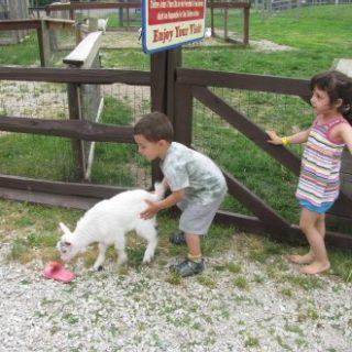 Family Getaway: Delavan, WI