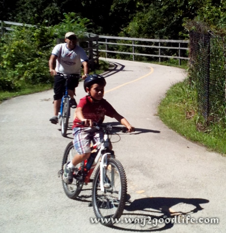 Bike Safety - father and son riding