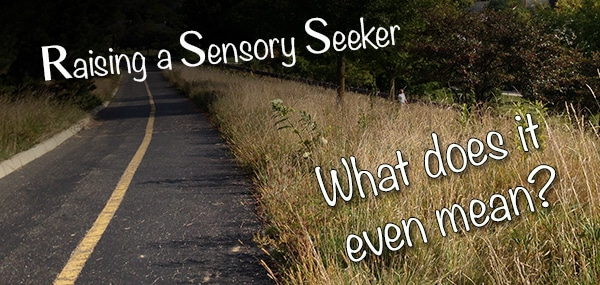 Raising my sensory seeker son: what does it even mean?