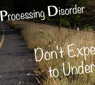 Talking about Sensory Processing Disorder Seeker