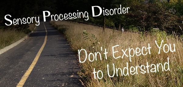 Sensory Processing Disorder Seeker: Don't expect you to understand