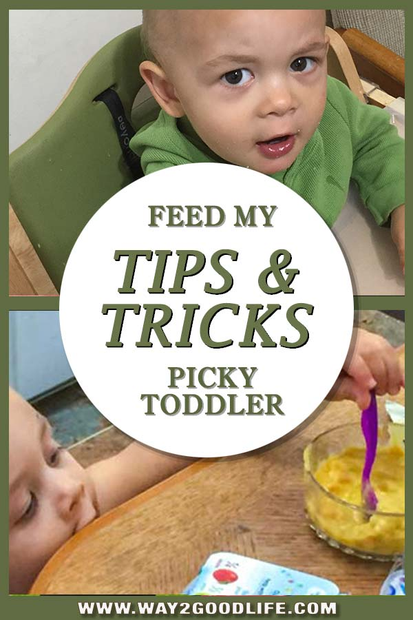 My 1-year-old toddler is a HUGE pain in a.... when it comes to his meals! He is picky and super opinionated. Here are some tricks I collected over the last few months trying to keep this child (and myself too) happy.