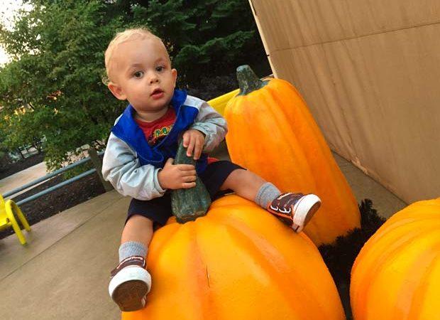 cedar-point-baby-pumpkin