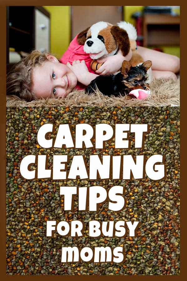 carpet cleaning tips for back to school season
