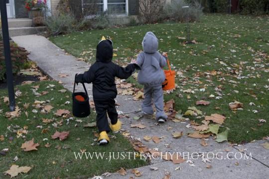Halloween Photo Challenge