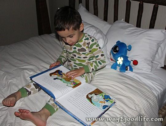 Reading w Dog Toy