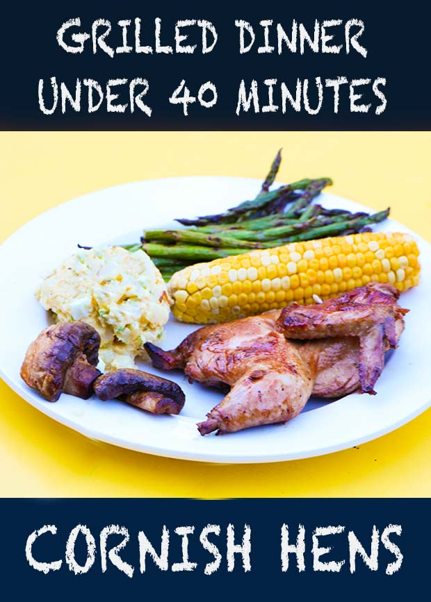 We are grilling Cornish hens tonight! This Quick Guide to a Backyard Grilled Dinner will get you from a freezer to a dinner plate in under 40 minutes #dinnerrecipes #grilled #Way2GoodLife #dinner