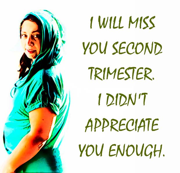 Pregnancy is like a roller coaster: just got used to one weird thing and everything changes again. What can you expect from your third trimester? Find out now!