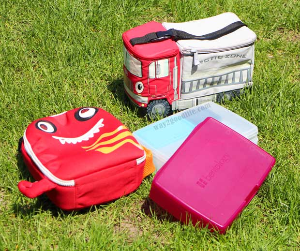 Pack a Snack for Camp cute lunch boxes on the grass