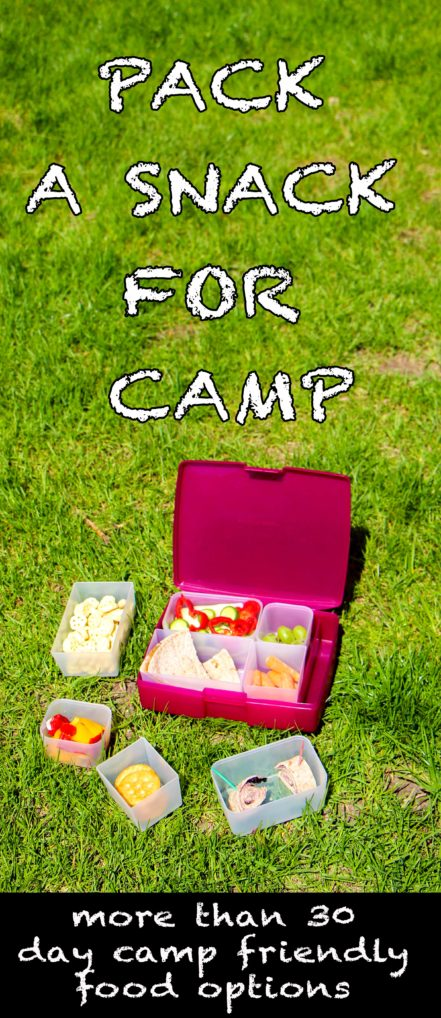 Pack a Snack for Camp - a lunch box on the grass - 30 day camp food options