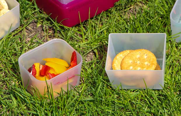 Pack a Snack for Camp in snack containers