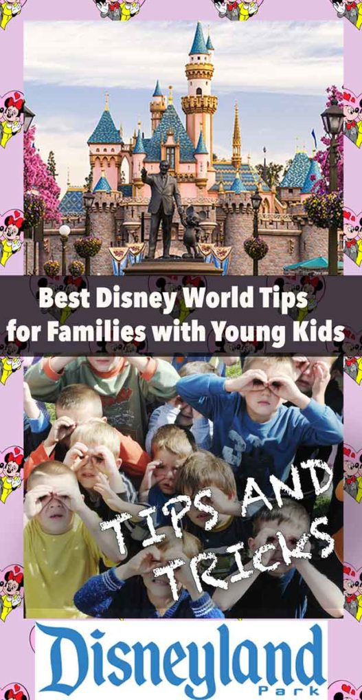 Before you go to Disney World, make sure to get these tips that will save you time and money #budgettravel #budgeting #familytravel #Way2goodlife