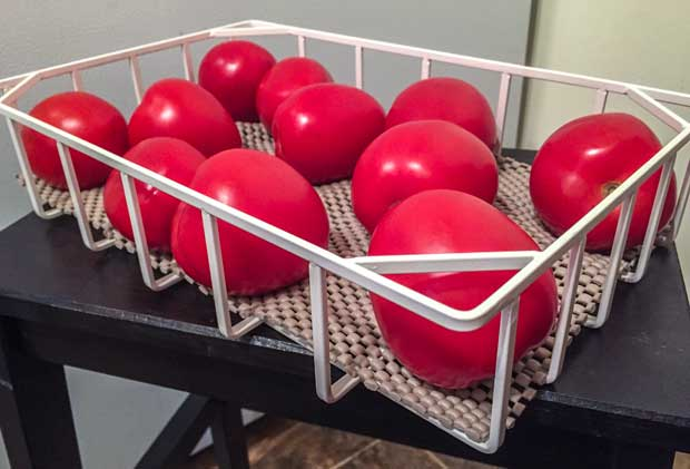 Storing-tomatoes