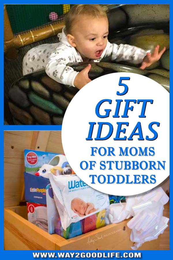What do mothers of stubborn toddlers really need for Christmas #toddler #holidaygifts #Way2GoodLife #christmasgifts