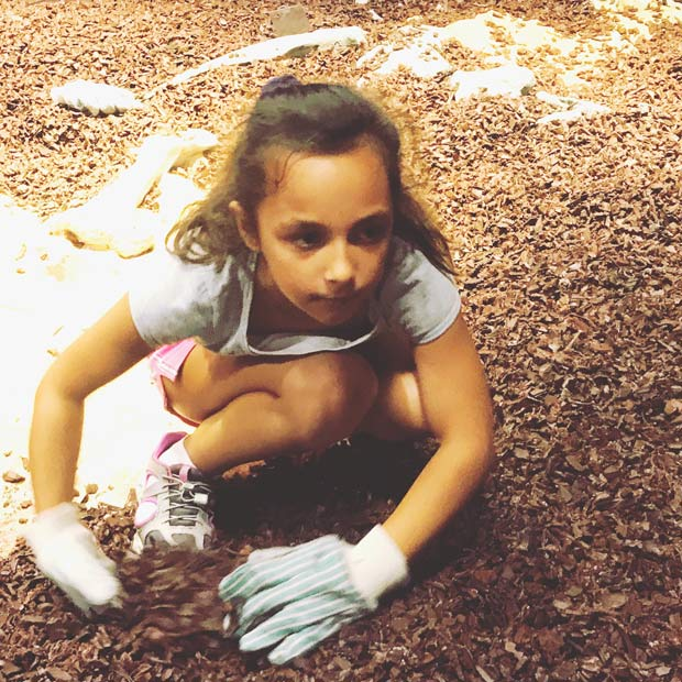 A girl looking for fossils in Midwest Childrens Museums