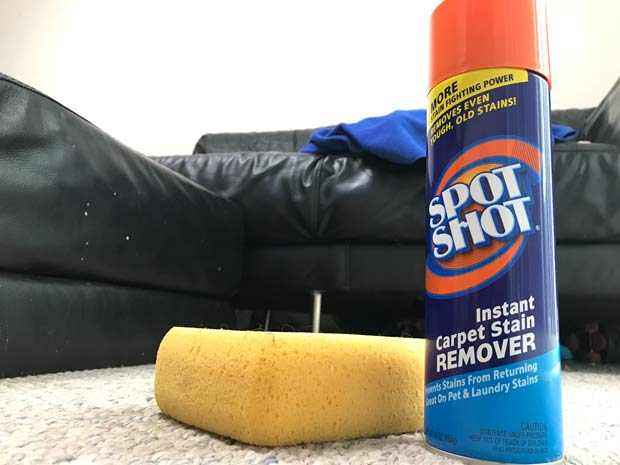 Spotshot bottle and sponge on carpet
