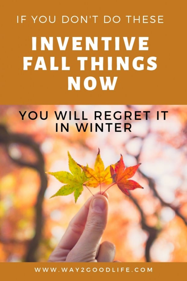 If you Don't do These Inventive Fall Things Now, You will be Regretting it Whole Winter #Fall #Way2GoodLife #fallactivities