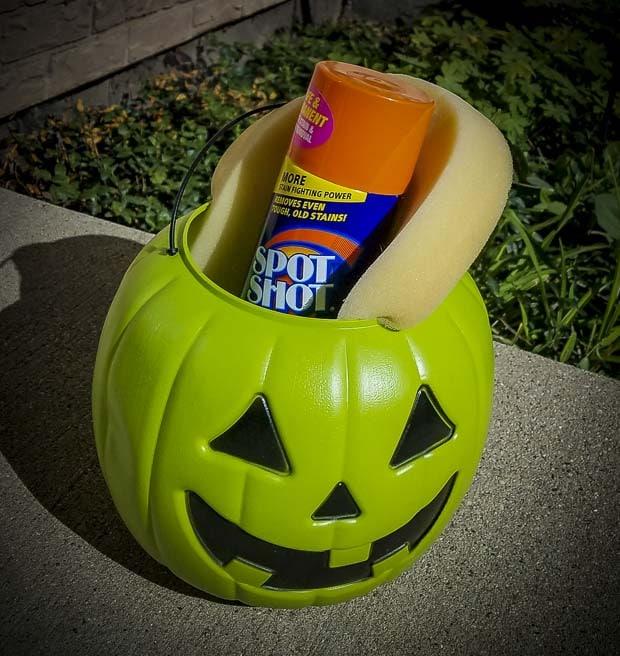 Pumpkin with Spot Shot