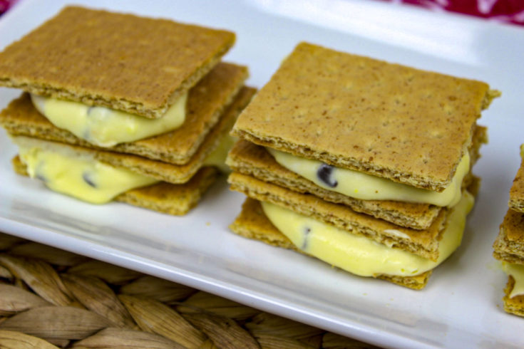 19-Graham Cracker Ice Cream Sandwich