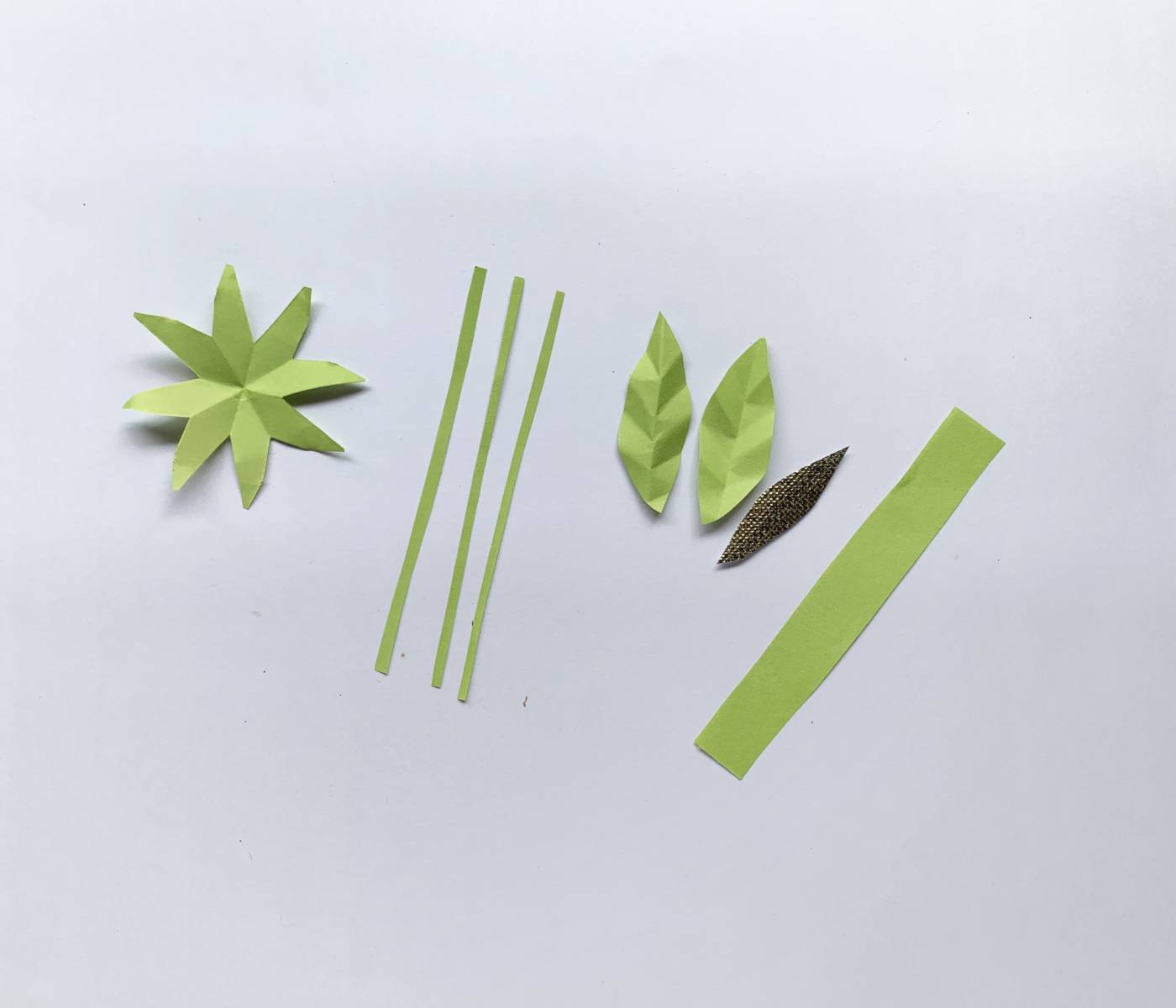 green pieces of paper spread out, one being an eight-pointed star shape, three being narrow strips, three being leaf shapes and one being a thick strip of paper