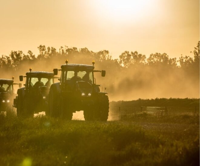 Tractor Museums - several tractors moving in the dust in sunset
