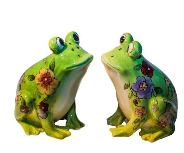 Funny froggy salt and pepper shakers
