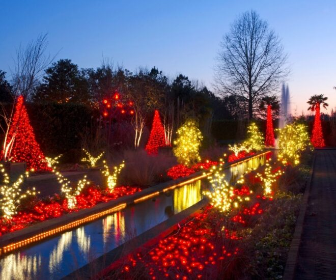 Holiday Christmas lights - by the water