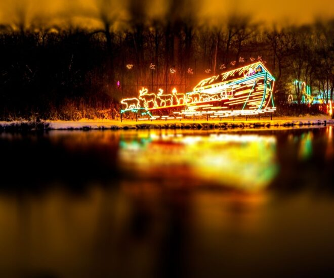 Holiday Christmas lights on sleigh by the water