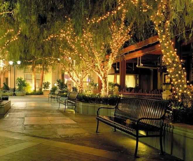 Holiday Christmas lights on trees and houses