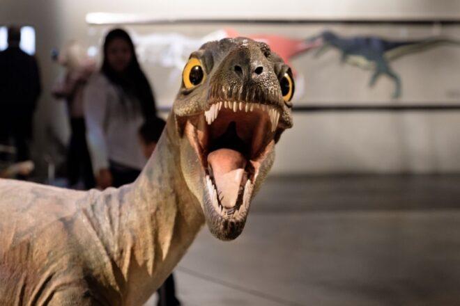 Dino creature looks in camera