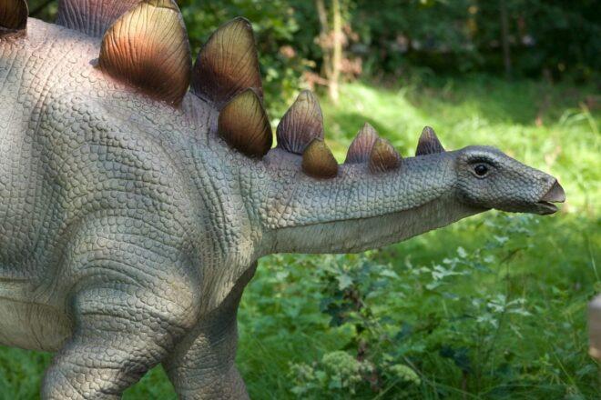 Dinosaur on green background