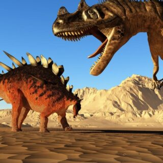Two dinosaur in the sand