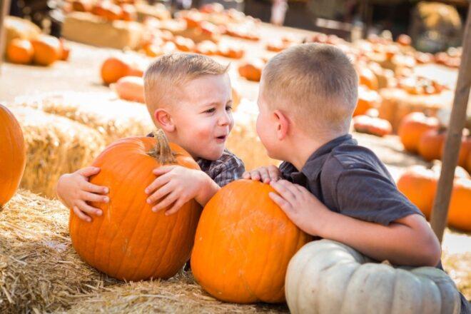 Boys with pumpkins